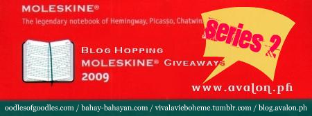 Blog Hop 2009 Series 2