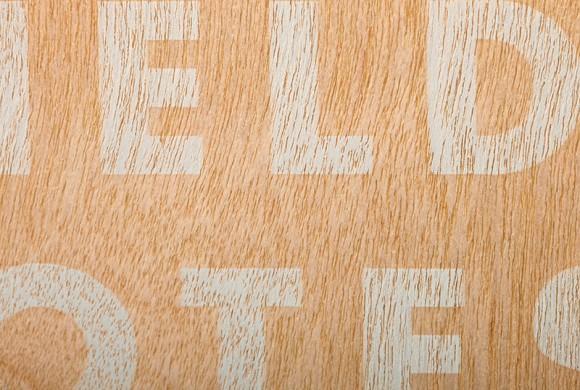 FNC22_ShelterwoodF800