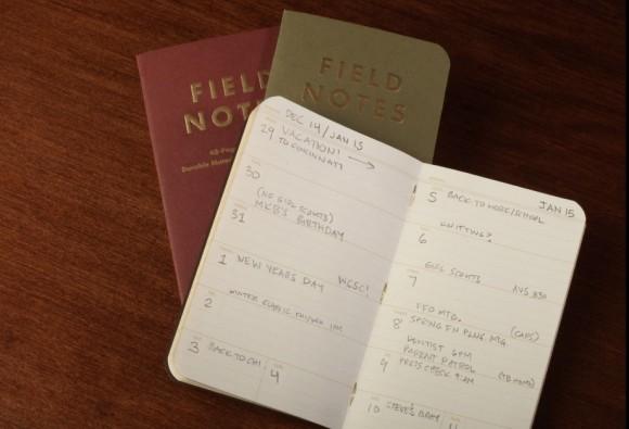 ambition_fieldnotes